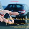 abd araç kiralama uluslararası ehliyet