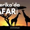 Safari denince akla Afrika'nın savanası, ya da Asya'nın sık bitki örtüsüyle kaplı ormanları geliyor. Ve elbette egzotik hayvanlar... Amerika'da safari bu resmi her zaman karşılayamasa da, egzotikliği kendine has ve yine de oldukça keyifli. Özellikle çocukların doğayı tanıması açısından büyük bir fırsat sunan Amerikan doğal yaşamı, sizlerin de arabanızla geçerken uğrayabileceğiniz ve çoğu zaman arabanızdan inmenize bile gerek kalmayacak kadar zengin ve korunaklı. Listemizde ABD içerisinde kolaylıkla ulaşabileceğiniz 10 safari parkının bilgilerini ve özelliklerini sıraladık.