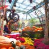Bellagio Conservatory  [Ücretsiz]  Yılda 5 milyondan fazla turistin ziyaret ettiği Bellagio Conservatory, mevsimine göre çiçekler, ağaçlar ve bitkilerle süslenerek çok farklı bir müzeye dönüşüyor.