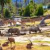 San Diego Zoo Safari Park  Burası safari parkı konseptinin tam anlamıyla doğduğu yer. Eğer ilk değilse bile dünyaca en tanınanı olduğu kesin. İçerisinde 6 kıtaya özgü 300'den fazla hayvan çeşidinin yaşadığı San Diego Hayvanat Bahçesi Safari Parkı, eğlencenin her çeşidini sunuyor.
