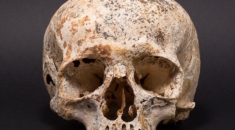 3700 yıllık kadın yüzü canlandırıldı ava