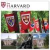 Harvard Üniversitesi ve MIT Üniversitesi Kampusları:  Harvard Üniversitesi: 1636 yılında kurulan Harvard Üniversitesi, ABD'nin en eski yüksek öğretim kurumudur. On beş milyondan fazla kitap kopyasını bünyesinde barındırıyor olmasından dolayı dünyanın en büyük akademik kütüphanesine sahip olma unvanını da elinde tutan bu kurum, birçok alanda verdiği eğitimle de dünya sıralamasında daima ilk beşe girmeyi başarmıştır. Metroyla kırmızı hattı kullanarak direk kampusun içine girebilir, öğrencilerin arasında gezebilirsiniz. Kısaca 'Kampus' olarak adlandırılan bu bölge aslında küçük bir mahalle sayılabilecek genişliğe sahiptir. Bu alan içindeki Harvard Square (Harvard Meydanı), öğrencilerin ders aralarında toplanıp dinlendiği, yiyecek ve içecek bir şeyler de bulabileceğiniz en keyifli bölümdür.