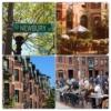 Newburry Caddesi, Boston'un en hareketli yerlerinden biridir. cadde boyunca 1850'lerden kalma tarihi binaların arasında lokantalar, sanat galerileri, pastaneler ve popüler markaların butiklerini bulabilirsiniz. Newbury, hareketliliği ve ışıltısıyla Boston'un kalbinin attığı yerlerden biri olarak görülür. (Duck Tour'a katılırsanız bu cadde de tur dâhilindedir.)