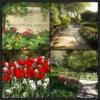 12.Shakespeare Garden   Central Park'ın gizli köşelerinden biri de güllerle bezeli Shakespeare Garden'dır. Birçok turist şayet rehber eşliğinde gezmiyorsa bu güzel yeri görme şansını kaçırır. 1916 yılında düzenlenen bu bahçeye sadece ünlü şairin şiirlerinde ismi geçen bitkiler ekilmiş böylece bu güzel alan Shakespeare Garden ismini almıştır. Ayrıca bu bahçe düğün organizasyonlarında da kullanılmaktadır.