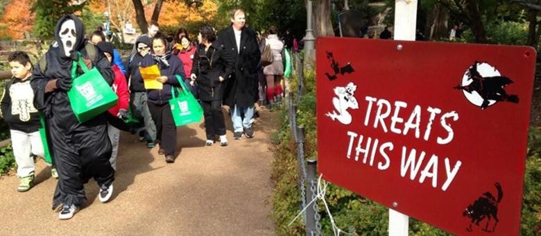 Chicago'da Bu Cadılar Bayramı'nı Çocuklar Hayvanat Bahçesi'nde Geçiriyor! [Ücretsiz Etkinlik]