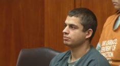 """ABD'de """"seri kedi katiline"""" 16 yıl hapis cezası"""