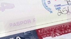vize pasport
