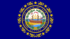 NEW HAMPSHIRE  New Hampshire, hiçbir satış vergisine sahip olmamasının yanında, sadece temettü geliri ve faiz geliri üzerinden % 5 oranında bir gelir vergisi alır. Bununla birlikte, New Hampshire vergi barınağı olmaktan çok uzak. Eyalet, benzin, tütün ve alkoldeki nispeten yüksek vergi oranlarını sahip. Ve ayrıca New Hampshire ABD'deki en yüksek emlak vergisi oranlarına sahip. Son veriler, ortalama emlak vergisi oranının % 2.15 (ev fiyatının 100.000 $ başına 2.150 $) olduğunu gösteriyor, ve araç vergisi oranı ortalama % 1.8'dir.