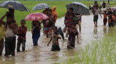 ABD'den 'Myanmar'a silah satışı askıya alınsın' çağrısı