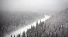 Alaska`da ıssızlığın ortasında