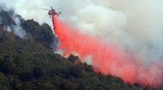 Orman yangınları ABD'yi büyük zarara uğrattı