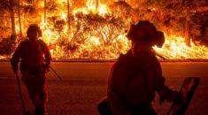 """Yangınların vurduğu Kaliforniya'da """"Hepatit A"""" alarmı"""
