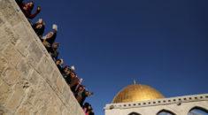 Dünya Trump'ın kararını bekliyor! Filistinliler ayağa kalktı bile...