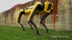 Boston Dynamics'in köpek robotu SpotMini şimdi de kapıları açıyor