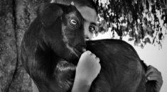sony-dunya-fotograf-yarismasi-nin-kazananlari-3